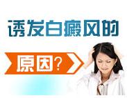 白癜风的发病原因与什么有关